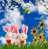 Image of flowers and toy hares close-up. Image of flowers and toy hares closeup Stock Photography