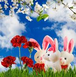 Image of flowers and toy hares close-up. Image of flowers and toy hares closeup Royalty Free Stock Photo