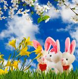 Image of flowers and toy hares close-up. Image of flowers and toy hares closeup Stock Image