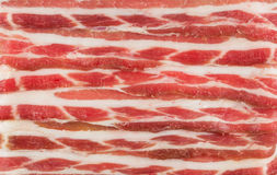 Image of fresh bacon. Texture macro Stock Images