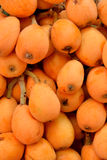 Image of fresh loquat fruit Royalty Free Stock Photo