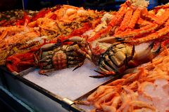 A Seafood Stall in the Market. An image of fresh seafood laid out on ice Royalty Free Stock Photo
