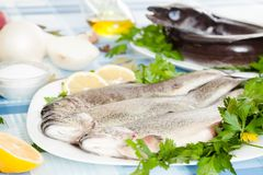 Image of freshness fish and vegetables. On the plate at the table Stock Photography