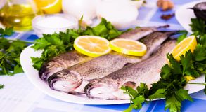 Image of freshness fish and vegetables. Image of freshness trout and vegetables on the plate at the table Stock Image