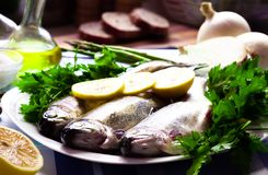 Image of freshness trout and vegetables Stock Images