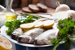 Image of freshness trout and vegetables. On the plate at the table Royalty Free Stock Photo
