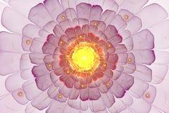 Image générée par ordinateur de fleur abstraite de fractale Photos stock