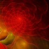 Image générée par ordinateur de fractale avec le coquillage photographie stock libre de droits