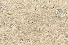 Image of Ghost Crab habitat on sand for background Royalty Free Stock Image