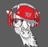 The image of the giraffe in the glasses, headphones and in hip-hop hat. Vector illustration. Royalty Free Stock Photos