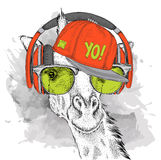 The image of the giraffe in the glasses, headphones and in hip-hop hat. Vector illustration. stock illustration