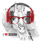 The image of the giraffe in the glasses and headphones. Vector illustration. Stock Photos