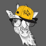 The image of the giraffe in the glasses and in hip-hop hat. Vector illustration. Stock Photos