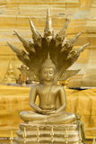 Image of golden buddha statue in temple in province tak. Royalty Free Stock Photography