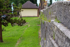 Image of gray wall and green vegetation Royalty Free Stock Photography