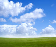 Image of the green field and the blue sky. With beautiful white clouds Royalty Free Stock Photography