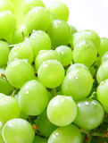 Image of green grape background Royalty Free Stock Photos