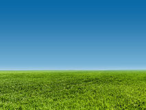 Image of green grass field and blue sky Royalty Free Stock Image