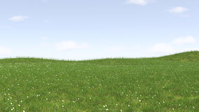 Image of green grass field and bright blue sky.  Royalty Free Stock Photos
