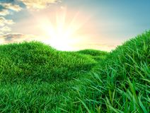 Image of green grass field and bright blue sky. 3d illustration Royalty Free Stock Photo