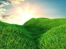 Image of green grass field and bright blue sky. 3d illustration Stock Photos