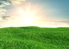 Image of green grass field and bright blue sky. 3d illustration Stock Image