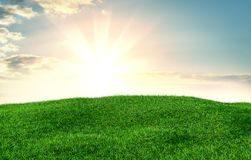 Image of green grass field and bright blue sky. 3d illustration Royalty Free Stock Photos
