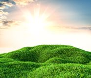 Image of green grass field and bright blue sky. 3d illustration Stock Photography