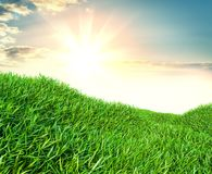 Image of green grass field and bright blue sky. 3d illustration Stock Photo