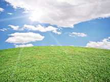 Image of green grass field and bright blue sky Stock Photos