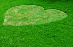 Image of green grass ( Heart shape ) Stock Photo