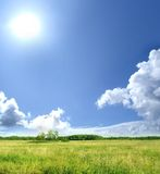 Image of a green meadow on a sky background Royalty Free Stock Photo