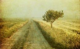 Image grunge d'un arbre au-dessus de fond grunge Images stock