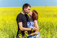 Image of happy couple kissing in yellow meadow. At summer Royalty Free Stock Photo