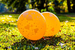 Image of hearts on the balloons on lawns. Image of hearts on the yellow balloons with sunshine on lawns at the park Royalty Free Stock Photography
