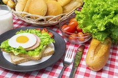 Homemade egg sandwich with milk on the table. Image of a homemade egg sandwich with assorted breads and milk on the dining table Royalty Free Stock Photography