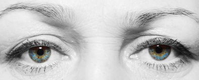 Eyes of the elderly white woman Stock Photos