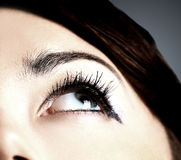 Image of human eye Stock Images