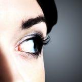 image of human eye Royalty Free Stock Image