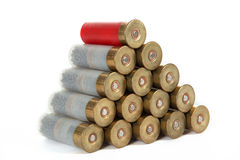 The image of the hunting cartridges Stock Photography