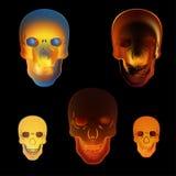Image illustration fire skull on black background Royalty Free Stock Image