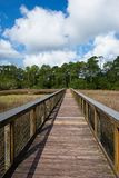 A wooden walkway across a marshy river with white fluffy clouds in a blue sky. This is an image of a image of a wooden walking pier which meanders across a Stock Image