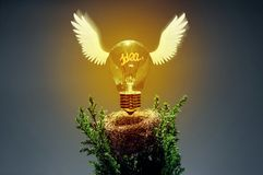 Concept of the new ideas, discoveries and solutions. Image of an incandescent lamp taking off from its nest. The filament forms the word `idea`. Concept of the Royalty Free Stock Photos