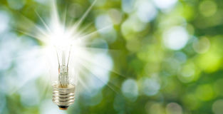 Image of included lamp on a green background royalty free stock images