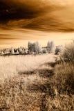image infrarouge d'appareil-photo ouvrez les champs verts Image libre de droits