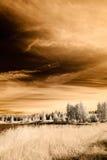 image infrarouge d'appareil-photo ouvrez les champs verts Image stock