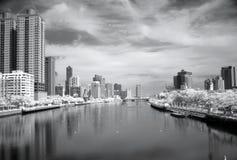 Image infrarouge du fleuve d'amour Image stock