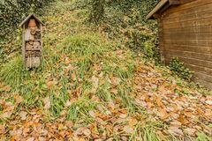 Image of an insect hotel in the park. On a beautiful autumn day in Vielsalm the Belgian Ardennes stock photo