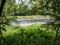Spring around James River. Image of the James River near Springfield Missouri. Taken early Spring. Enjoyed how all of the lush greenery, made a kind of natural Royalty Free Stock Photography