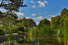 Image of Japanese Garden located on Margit Island of Budapest, Hungary during sunny summer day Stock Photography